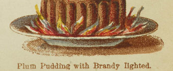 Plum Pudding Mrs Beeton Colour